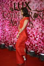 Surveen Chawla at Lux Golden Rose Awards 2016 on 12th Nov 2016 (1092)_582854b2bb1eb.JPG