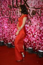 Surveen Chawla at Lux Golden Rose Awards 2016 on 12th Nov 2016 (1096)_582854b7233d2.JPG