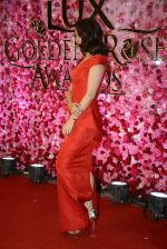 Surveen Chawla at Lux Golden Rose Awards 2016 on 12th Nov 2016 (1097)_582854b8077df.JPG