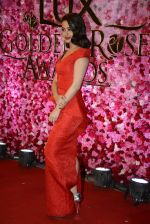 Surveen Chawla at Lux Golden Rose Awards 2016 on 12th Nov 2016 (1112)_582854c83ae6e.JPG