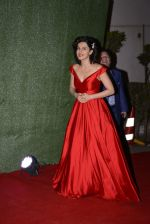 Taapsee Pannu at Lux Golden Rose Awards 2016 on 12th Nov 2016 (360)_582854bd1a47e.JPG