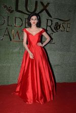 Taapsee Pannu at Lux Golden Rose Awards 2016 on 12th Nov 2016 (379)_582854cb87b99.JPG
