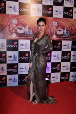 at ITA Awards 2016 in Mumbai on 13th Nov 2016 (393)_582ab0ae355a0.JPG