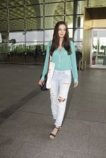 Evelyn Sharma snapped at airport on 15th Nov 2016 (22)_582bfe6c89f40.JPG