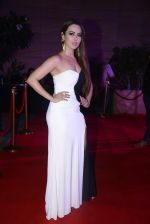 Sana Khan at Femina Salon And Spa Hair Heroes awards on 16th Nov 2016 (152)_582d5db571ada.JPG