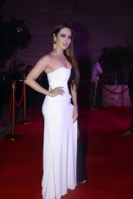 Sana Khan at Femina Salon And Spa Hair Heroes awards on 16th Nov 2016 (153)_582d5db60aaf9.JPG