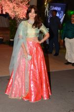 Shaheen Abbas at Wedding reception of stylist Shaina Nath daughter of Rakesh Nath on 17th Nov 2016 (15)_582ead198f5b7.JPG