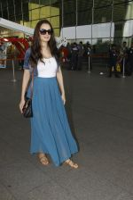 Evelyn Sharma snapped at airport on 18th Nov 2016 (24)_583065e9c3683.JPG