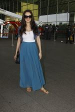 Evelyn Sharma snapped at airport on 18th Nov 2016 (26)_583065ec8db7b.JPG