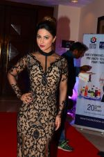 Hina Khan at ABP bash on 20th Nov 2016 (83)_5832a4664319e.JPG
