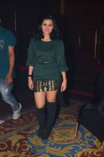 Riddhi Dogra at ABP bash on 20th Nov 2016 (38)_5832a48ec11ec.JPG