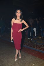 at ABP bash on 20th Nov 2016 (6)_5832a4202024e.JPG