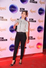 Gauhar Khan at Opa Anniversary bash hosted by Andi on 22nd Nov 2016 (40)_58353a226d9d2.JPG