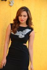 Sana Khan at Wajah Tum Ho film promotions in Mumbai on 22nd Nov 2016 (43)_58353c6cefcd1.JPG