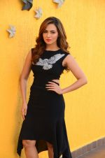 Sana Khan at Wajah Tum Ho film promotions in Mumbai on 22nd Nov 2016 (33)_58353c57af9c4.JPG