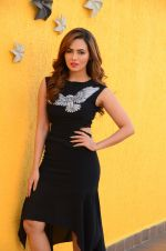 Sana Khan at Wajah Tum Ho film promotions in Mumbai on 22nd Nov 2016 (35)_58353c5b97e78.JPG