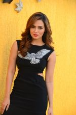 Sana Khan at Wajah Tum Ho film promotions in Mumbai on 22nd Nov 2016 (42)_58353c68ea0f8.JPG