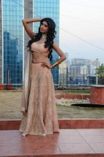 Vindhya Tiwari photo shoot on 22nd Nov 2016 (14)_58353b4fd58d6.JPG