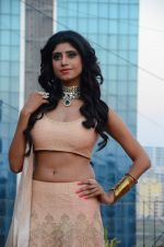Vindhya Tiwari photo shoot on 22nd Nov 2016 (9)_58353b3f6d3df.JPG
