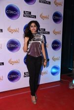 at Opa Anniversary bash hosted by Andi on 22nd Nov 2016 (22)_5835390d5f697.JPG