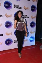 at Opa Anniversary bash hosted by Andi on 22nd Nov 2016 (24)_5835390f882e1.JPG