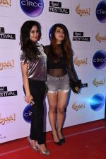 at Opa Anniversary bash hosted by Andi on 22nd Nov 2016 (31)_583539157f2fb.JPG
