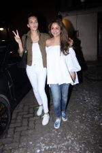 Amrita Arora at Deanne Pandey hosts bash for Aayush and Arpita on 23rd Nov 2016 (43)_5836c7abac50a.JPG