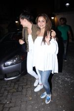 Amrita Arora at Deanne Pandey hosts bash for Aayush and Arpita on 23rd Nov 2016 (46)_5836c7adc64d6.JPG