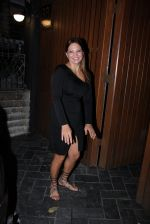 Deanne Pandey hosts bash for Aayush and Arpita on 23rd Nov 2016 (13)_5836c83836da5.JPG