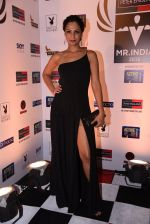 Shamita Singha at Peter England Mr India on 24th Nov 2016 (419)_583846649b24a.JPG