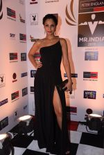 Shamita Singha at Peter England Mr India on 24th Nov 2016 (424)_5838466843f65.JPG