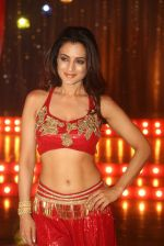 Ameesha Patel on location of a south indian movie on 25th Nov 2016 (144)_58396f0d4ec96.JPG