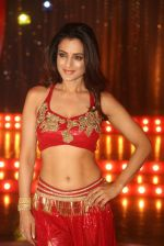 Ameesha Patel on location of a south indian movie on 25th Nov 2016 (145)_58396f0f6ceee.JPG