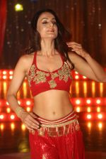 Ameesha Patel on location of a south indian movie on 25th Nov 2016 (151)_58396f1cbcdf3.JPG