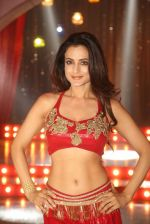 Ameesha Patel on location of a south indian movie on 25th Nov 2016 (189)_58396f494c14c.JPG