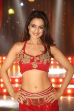 Ameesha Patel on location of a south indian movie on 25th Nov 2016 (212)_58396f649f3ec.JPG