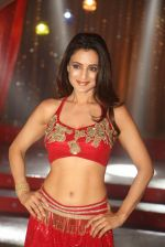 Ameesha Patel on location of a south indian movie on 25th Nov 2016 (231)_58396f7d2e22e.JPG