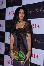 Nisha Jamwal at Ritika and Kunal Vardhan_s Spare Kitchen launch in Atria Mall on 25th nov 2016 (53)_58396b042953a.JPG