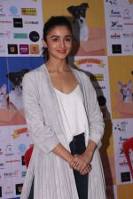 Alia Bhatt at Pet adoptation on 26th Nov 2016 (288)_583a85645aac8.JPG