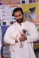 Saif Ali Khan at Pet adoptation on 26th Nov 2016 (138)_583a86202bc20.JPG