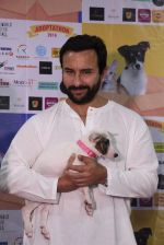 Saif Ali Khan at Pet adoptation on 26th Nov 2016 (141)_583a8638d3b98.JPG