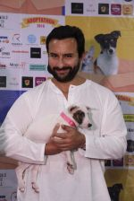 Saif Ali Khan at Pet adoptation on 26th Nov 2016 (142)_583a8621e5b37.JPG