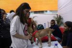 Soha Ali Khan at Pet adoptation on 26th Nov 2016 (78)_583a865b3b647.JPG