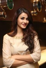 Aditi Arya Miss India photo shoot on 27th Nov 2016 (77)_583bd5a6a6d86.JPG
