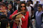 Farah Khan at pet adoption in Mumbai on 27th Nov 2016 (25)_583bdc3282bc9.jpg