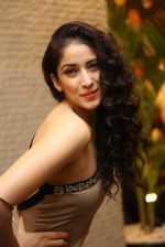 Neha Ahuja Photo Shoot on 27th Nov 2016 (82)_583bd6c3e741f.JPG