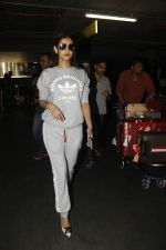 Sonal Chauhan snapped at Airport on 27th Nov 2016 (23)_583bce7775a3c.JPG