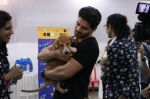 Sooraj Pancholi at pet adoption in Mumbai on 27th Nov 2016 (65)_583bdcae6f202.jpg