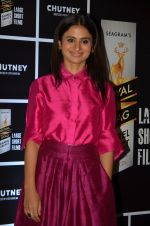 Rasika Duggal at Chutney film launch on 28th Nov 2016 (95)_583d2744365e3.JPG