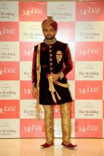 Rohit Khandelwal  felicitated by Brand Mebaz On Winning Mr.World-2016 on 29th Nov 2016 (25)_583e70dd319bc.jpg